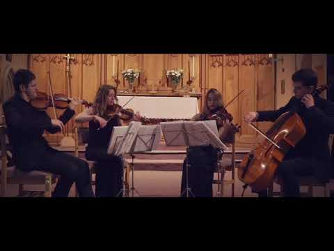 Can You Feel The Love Tonight Played by the Endymion String Quartet