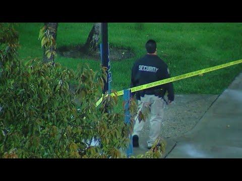 U of U officials launch 2 investigations after death of Lauren McCluskey
