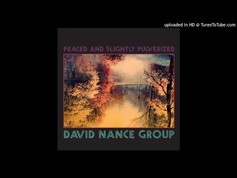 David Nance Group - When I Saw You Last Night Mp3