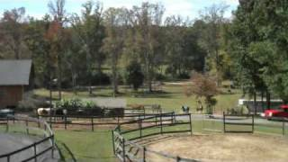 Horse Stables and Business for Sale Atlanta Georgia