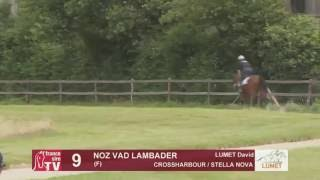 Show Lumet 2016 - Lot 9 - Noz Vad Lambader
