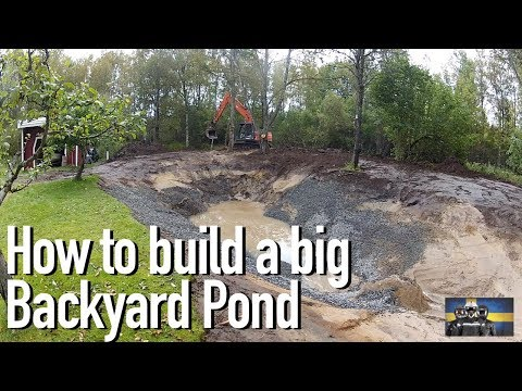 how-to-build-a-big-fish-and-crayfish/crawfish-pond-in-your-backyard