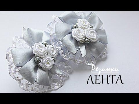 комнатные цветы фото и название на букву п