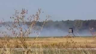 Pożar łąk w Łubnianach