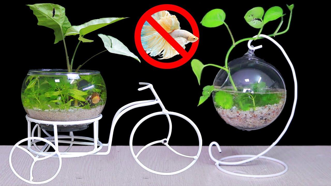 TOP 2 IDEAS - How To Make Micro Aquarium For Desktops - Home Decor
