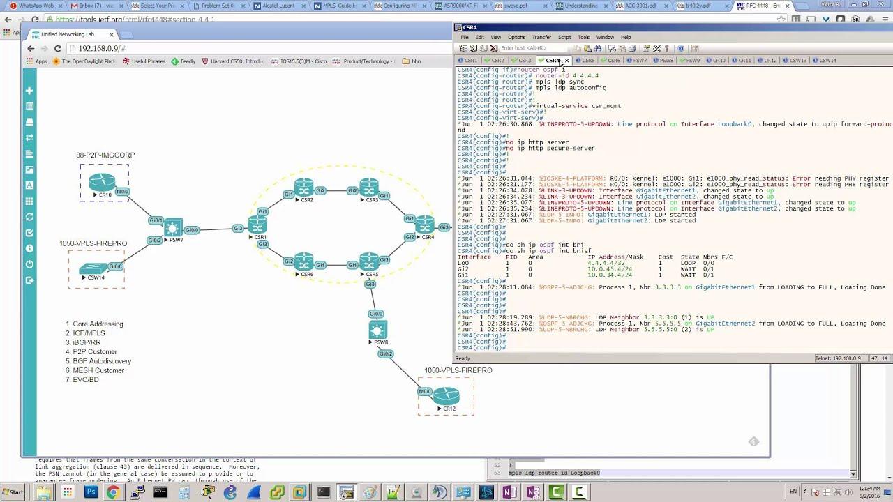 MPLS L2VPN | VPLS | EVC | iBGP RR Autodiscovery