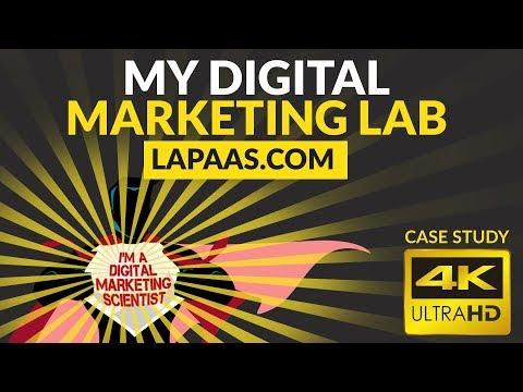 Lapaas Case Study | Why We Are The Best in Digital Marketing?
