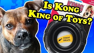 Is Kong KING of dog toys? - Dog Toy Reviews | Kong Traxx