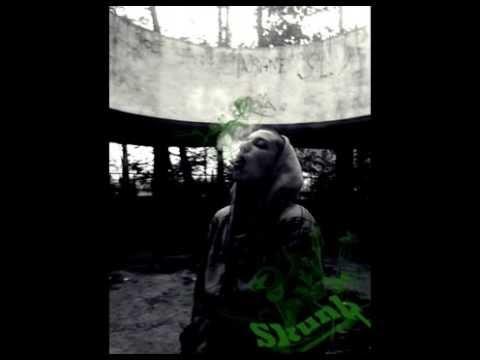 Skunk & Drey - Liber arbitru