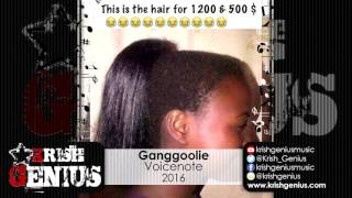 Ganggoolie - Voicenote (Jamaica Ochi) May 2016
