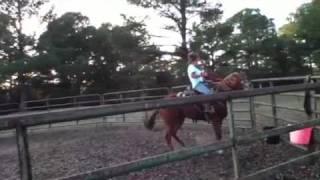 Kalie Breakin A Horse
