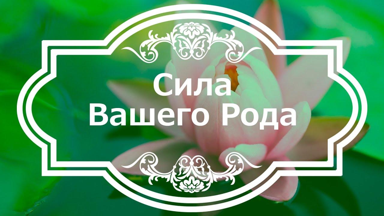 Екатерина Андреева - Сила Вашего Рода