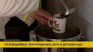 ЧП в деревне Вишнёвка: в детском саду отравились дети