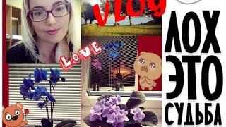 "VLOG: Экскурсия по "" Макси Дом"" и я ""Лох!!!!!!"" заблудилась.. от Кати bysinka2032"