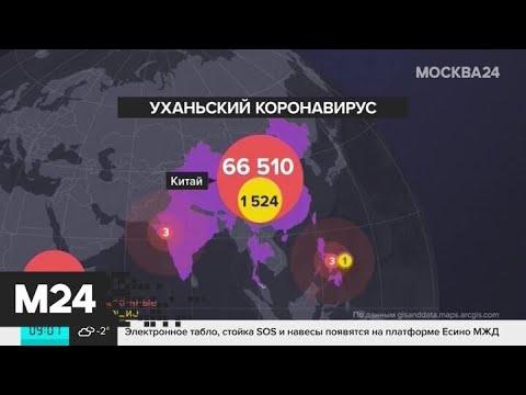 В Африке подтвердили первый случай заражения коронавирусом - Москва 24