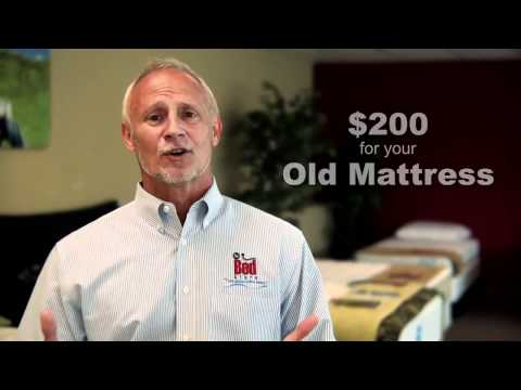 The Bed Store Grand Opening Mattress Sale