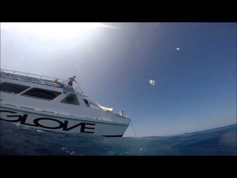 Snorkeling With John Biehler In Kona With Body Glove Hawaii #30DaysInHawaii