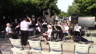 The Star Spangled Banner by the Moscow Arts Commission Band - July 1, 2017