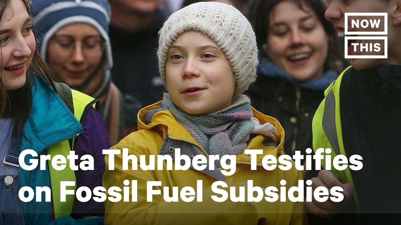 Greta Thunberg testifies before Congress on Earth Day