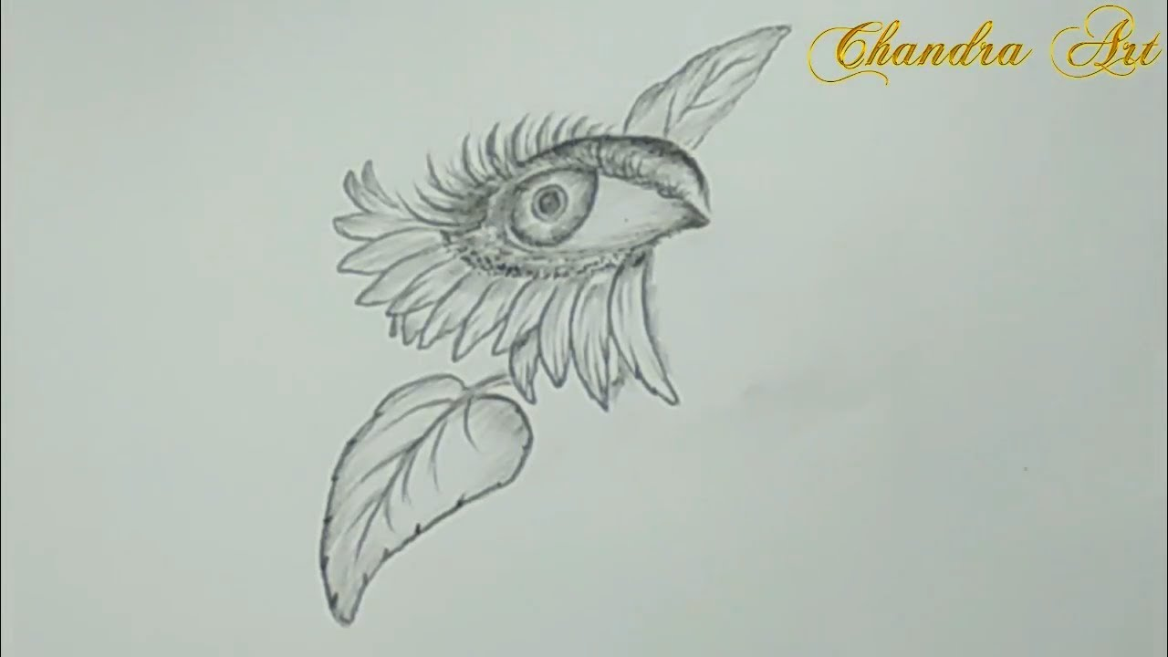 Simple Cool Drawings Pencil Drawing A Sunflower Eye Easy