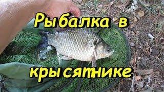 Рыбалка на фидер в Запорожье - выход из красной реки...НЕ  ИДИ ТУДА в сентябре!