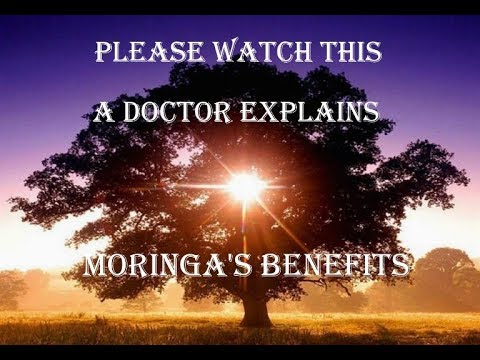 Moringa Oleifera Benefits explained by a real medical doctor 1