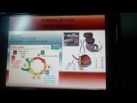 aula-de-biologia-(núcleo-celular|parte-1)---3ª-série-e.m.---professor-ronaldo-costa