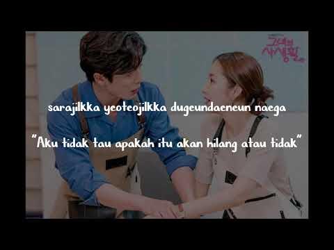 Lee Hae Ri (Davichi) - Maybe OST Her Private Life Lyrics (Indo Sub)