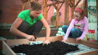 How To Build A 4x4 Raised Garden Bed With Wegmans