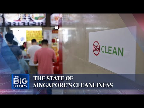 The state of Singapore's cleanliness | The Straits Times