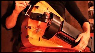 Der Elefant (Drehleier, Gitarre, Tabla - Prog Folk)