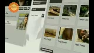 Пример Создание сайта для NG Wild(Как делаются сайты? Смотрите процесс создания сайта. Как создать качественный сайт? На сегодняшний день..., 2014-02-15T14:42:23.000Z)