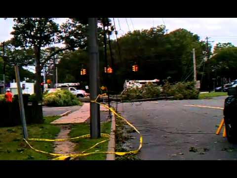 Tree falls on roe st in patchogue,but