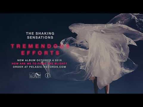 The Shaking Sensations - Tremendous Efforts Mp3
