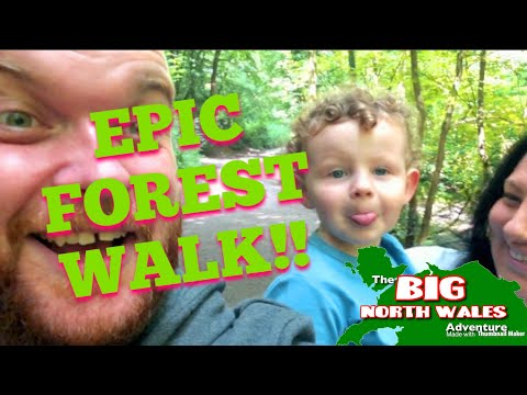 DISCOVERING MYSTERY WELSH CASTLES IN THE FOREST - Wepre Park, North Wales from YouTube · Duration:  10 minutes 50 seconds