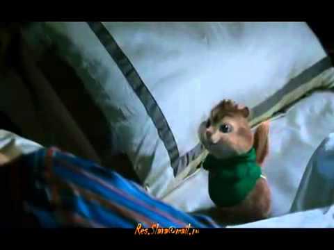 Элвин и Бурундуки-Клип