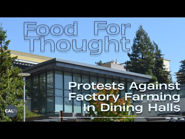 Food for Thought: Protests Against Factory Farming In UC Berkeley