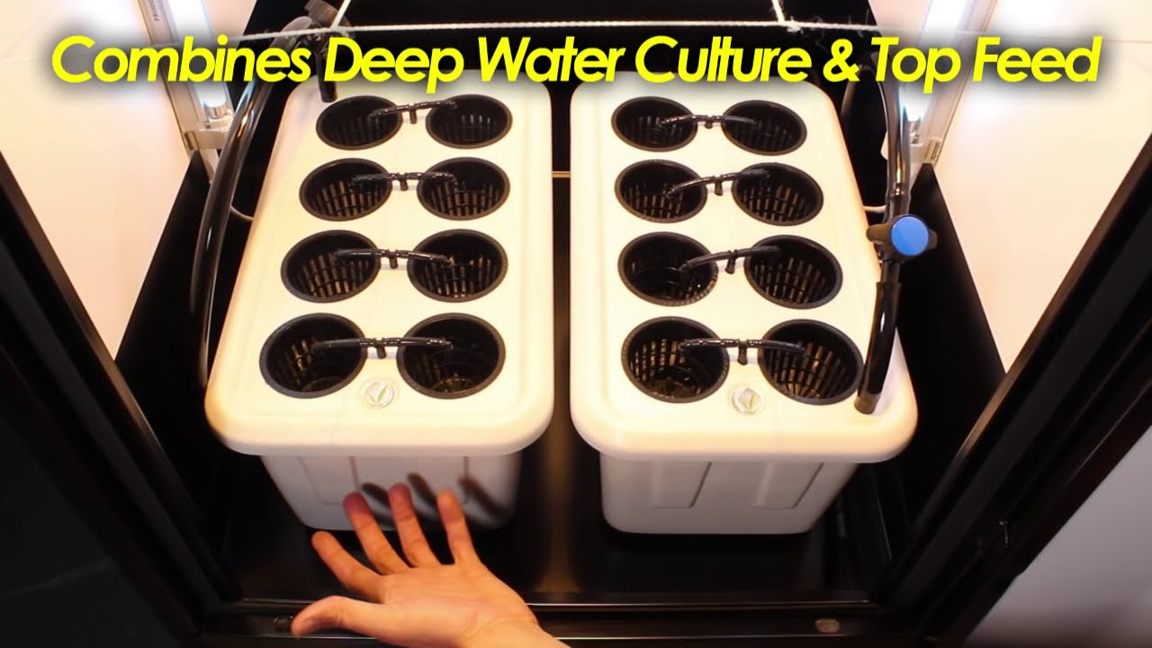 Fully Automated Grow Box Design Quot Superstar Quot Youtube