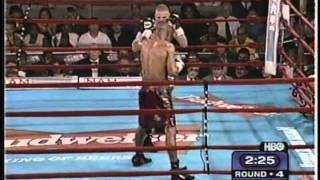 Roy Jones Junior vs Lou Del Valle - WBC/WBA Light Heavyweight Title - Part 1 / 2