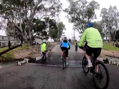 Mannum to Younghusband with the Mannum Peddle Wheelers