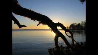 Göksel Baktagir - Yalnız Sen (Instrumental turkish music)