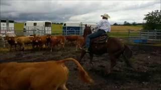 Ranch sorting vidéos de 1 à 39