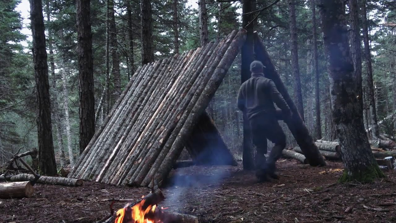My big project:A frame Cabin building deep in the forest, cooking steaks over the fire. ( PART-2 )