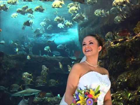 wilmington-north-carolina's-finest-wedding-reception-locations-nc-aquarium-at-fort-fisher
