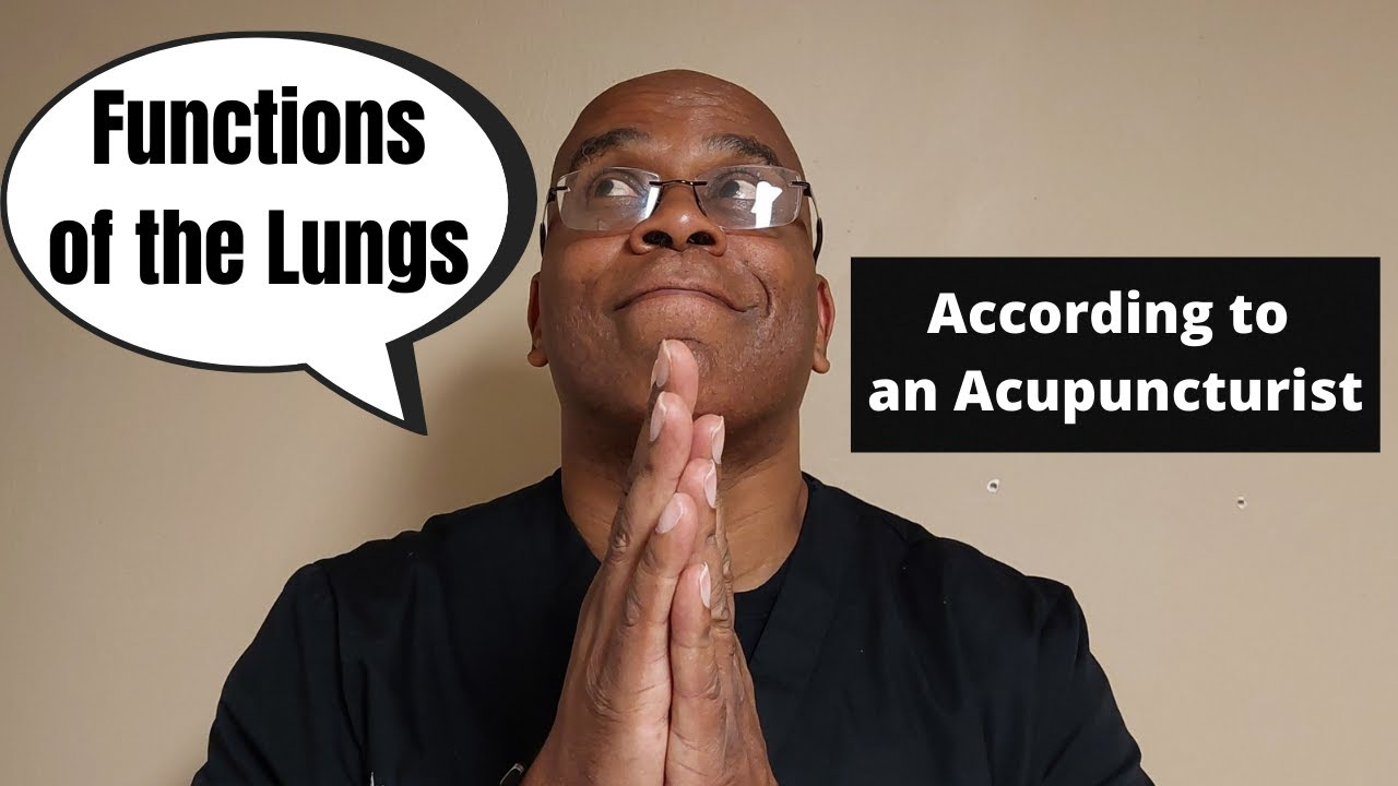 The Main Functions of the Lungs in Acupuncture | Acupuncture is My Life