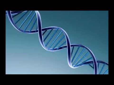 ATIVAÇÃO DOS CÓDIGOS DO DNA