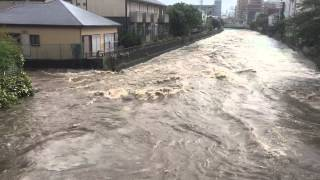 台風18号で氾濫寸前の境川(藤沢橋より②)