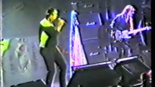 Play The Web (Live at Utrecht 1985)