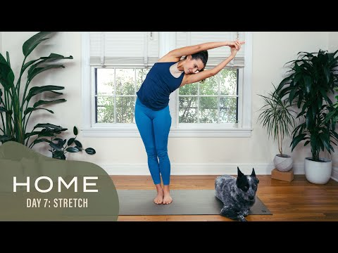 Home - Day 7 - Stretch   30 Days of Yoga With Adriene