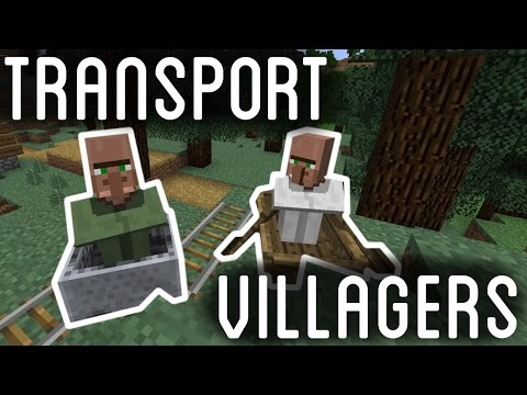 Minecraft: Can You Get Villagers to Follow You? Answered